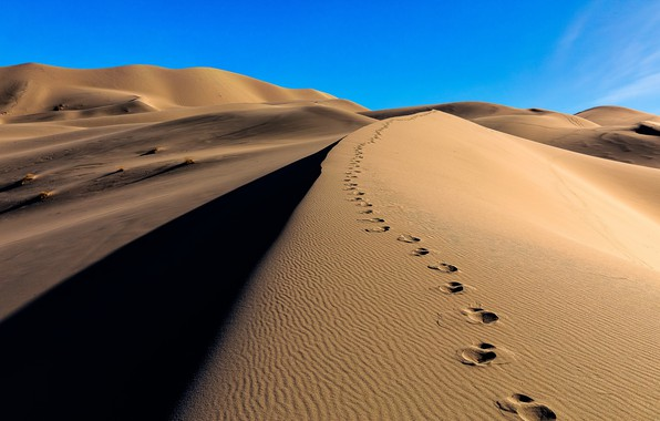 Picture sand, traces, desert, dunes