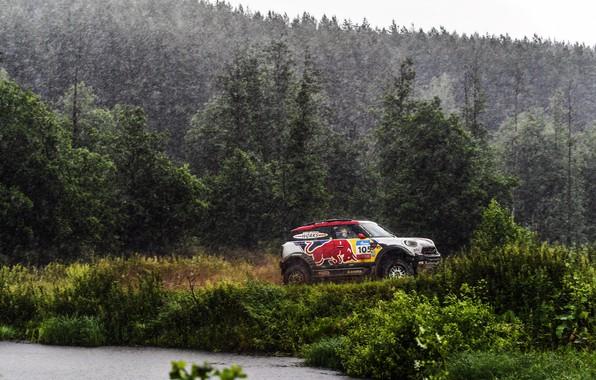 Picture Mini, Cooper, Forest, Sport, Rain, Race, Mini Cooper, Russia, Rally, Rally, Sport, The shower, Mini, …