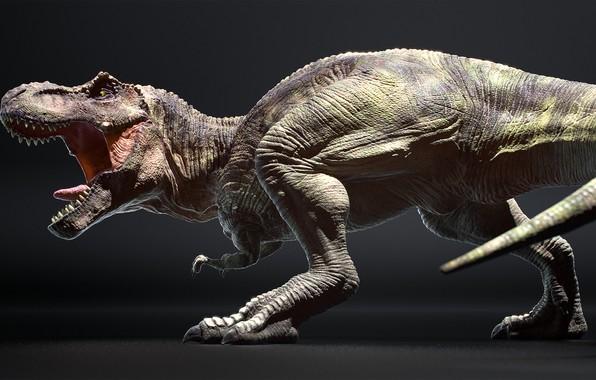 Picture dinosaur, art, lizard, Antoine Verney-Carron, T.REX