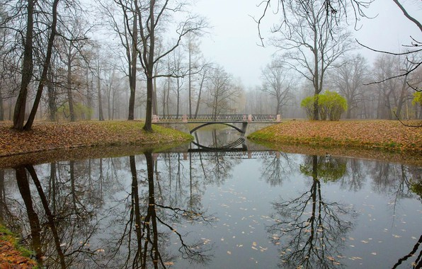 Picture autumn, bridge, reflection, river, Tsarskoye Selo