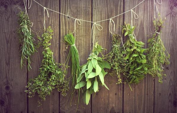 Picture greens, grass, thread, hang, bundles