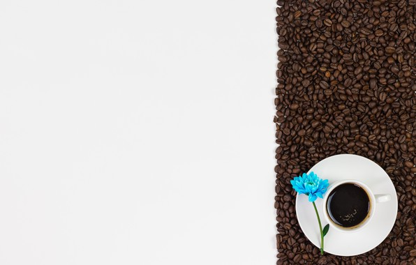 Picture flowers, coffee, grain, love, flowers, cup, romantic, beans, coffee