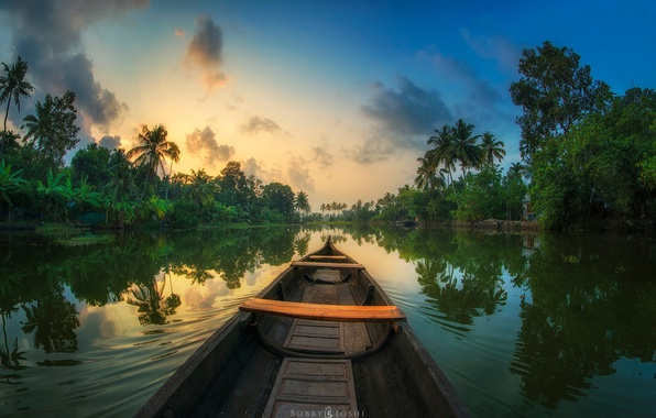 Picture reflection, river, palm trees, boat, jungle