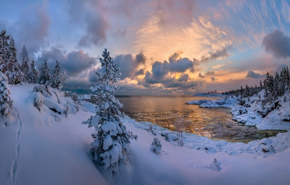 Picture winter, forest, snow, lake, ate, the snow, Russia, Lake Ladoga, Karelia