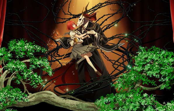 Picture spikes, two, Mahou Tsukai no Yome, Bride of the sorcerer