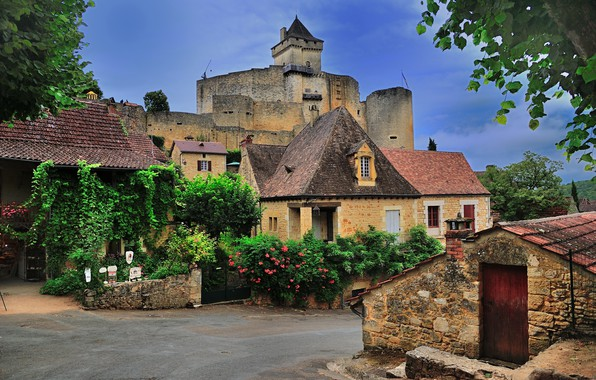 Picture France, The city, Castle, Street