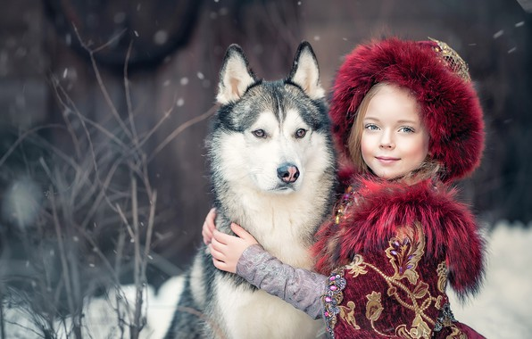 Picture dog, friendship, girl, friends, husky, Yaroslav Gromov, Princess