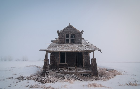 Picture winter, fog, house