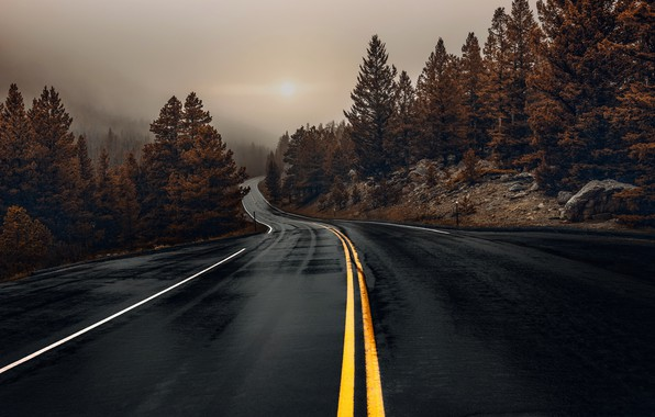 Picture road, nature, the evening