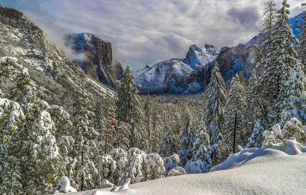 Picture winter, forest, snow, mountains, ate, valley, CA, California, Yosemite Valley, Yosemite national Park, Yosemite National …