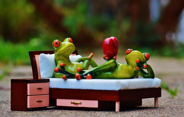 Picture love, bed, Frog, Prince, heart, Lady