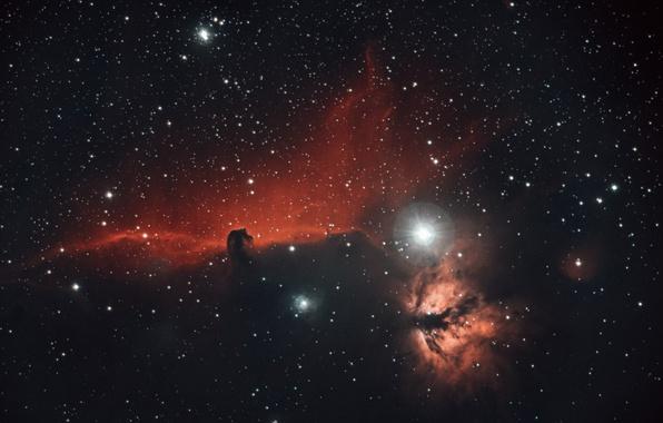Picture space, stars, nebula, horse head, Horsehead