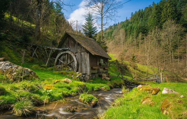 Picture forest, mill, river