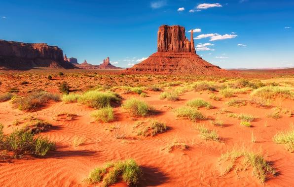 Picture sand, the sky, grass, the sun, clouds, stones, rocks, desert, space, USA, Arizona