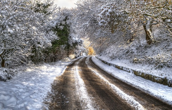 Photo wallpaper HDR, trees, snow, winter, road, trees, winter