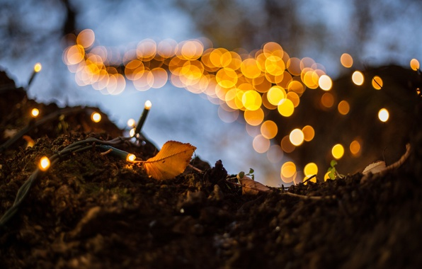 Photo wallpaper light, sheet, garland, bokeh