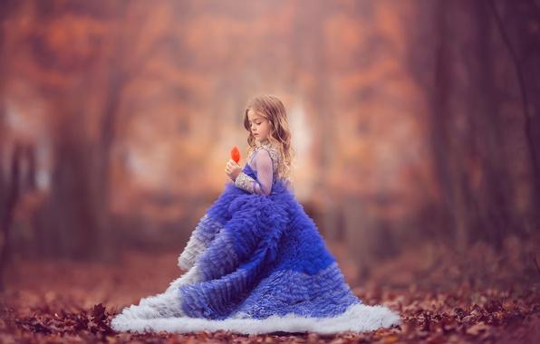 Picture autumn, mood, dress, girl, leaf, bokeh