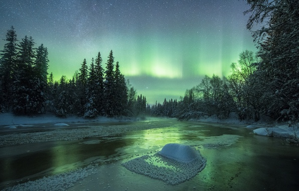 Picture winter, forest, the sky, snow, night, nature, river, Northern lights