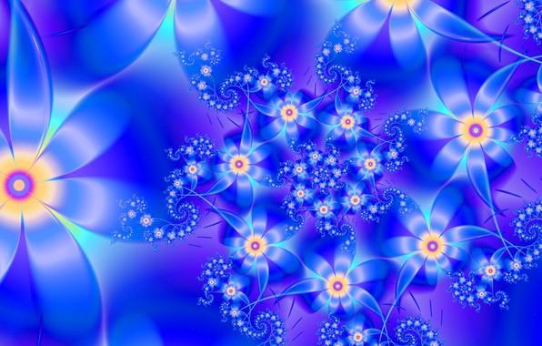 Picture flower, line, pattern, fractal