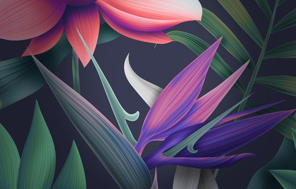 Picture 1920x1080, mate, floral, huawei, 10_stock