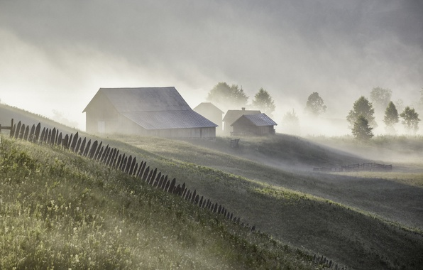 Picture summer, fog, home, morning
