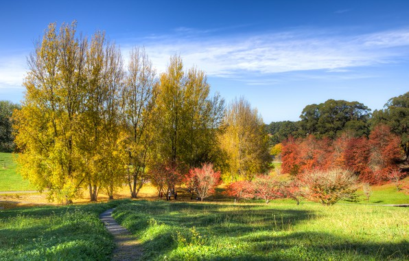 Picture autumn, the sky, grass, the sun, clouds, trees, Park, Australia, path, the bushes, Mount Lofty ...