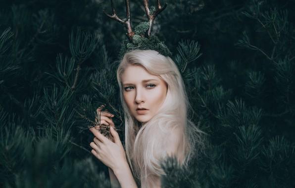 Picture forest, girl, horns, Maria Amanda, Bird Man, The Woodland Fairy