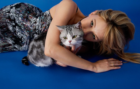 Picture look, blue, background, makeup, dress, hairstyle, lies, brown hair, beauty, kitty, on the floor, photoshoot, …