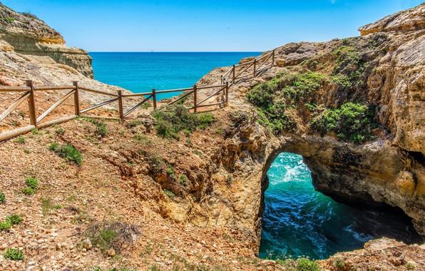Picture beauty, coast, landscape, nature