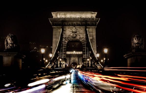 Picture night, lights, Leo, support, Hungary, Budapest, Chain bridge