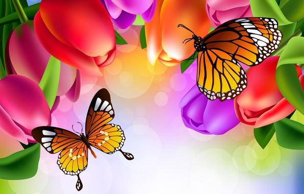 Picture butterfly, flowers, figure, tulips, brightness