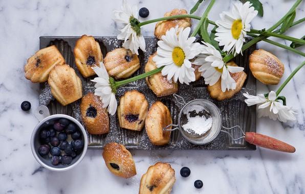 Picture berries, chamomile, cookies, blueberries, dessert, cakes, powdered sugar, Anna Verdina