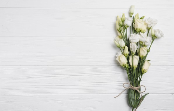 Picture Flowers, bouquet, White background, Eustoma