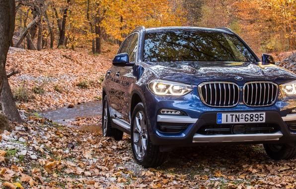 Picture autumn, SUV, 2017, xLine, BMW X3, xDrive20d