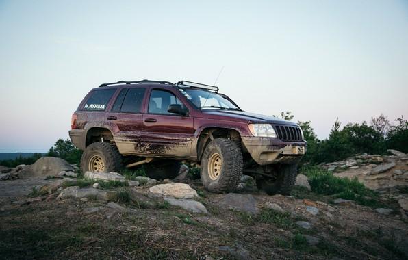 Picture SUV, Jeep, Grand Cherokee, Jeep Grand Cherokee