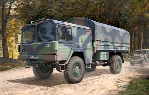 Picture truck, 4x4, MAN, 5 t, mil gl, Truck