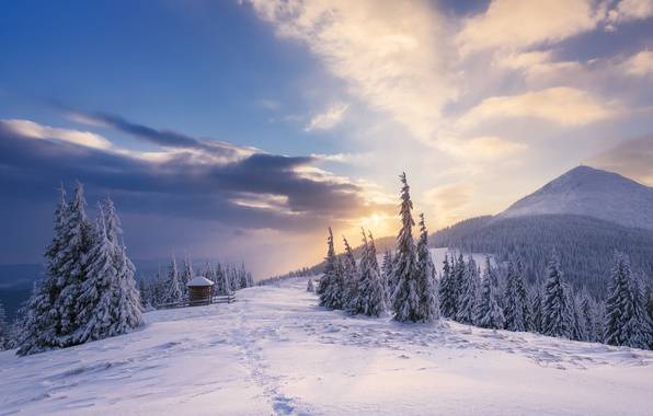 Picture winter, forest, the sky, the sun, clouds, snow, landscape, mountains, traces, beauty, ate, space, the …
