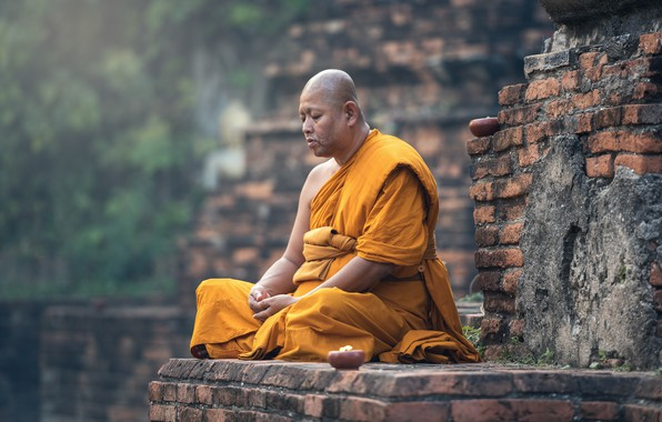 Picture Wall, Pose, Portrait, Religion, Monk, Meditation