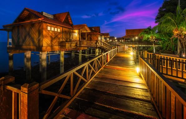 Picture sea, night, lights, tropics, palm trees, Bay, lights, houses, resort, Malaysia, Berjaya Langkawi Resort