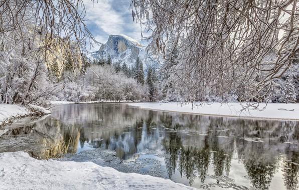 Picture winter, forest, snow, branches, river, mountain, CA, California, Yosemite Valley, Yosemite National Park, Half Dome, …
