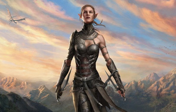 Picture girl, fantasy, game, sky, landscape, nature, mountains, clouds, birds, dragon, weapons, elf, digital art, artwork, …