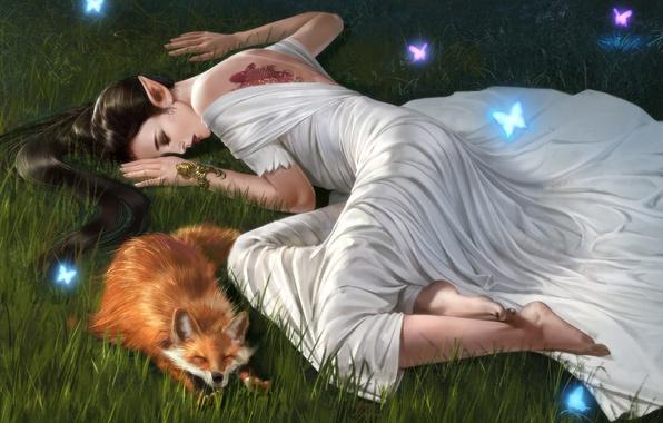 Picture Girl, Butterfly, Fox, Elf, Sleep, Fiction, Fox