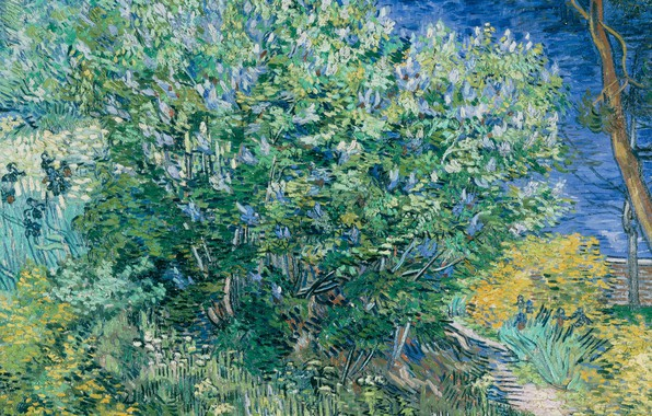 Picture landscape, picture, Vincent Willem van Gogh, Vincent van Gogh, The Lilac Bush