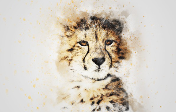 Photo wallpaper look, face, picture, watercolor, leopard