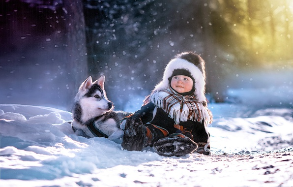 Picture winter, light, child, dog, boy, puppy, husky