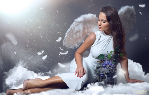 Picture girl, flowers, wings, angel, cell