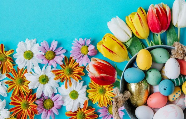Picture flowers, chamomile, spring, colorful, Easter, tulips, chrysanthemum, flowers, tulips, spring, Easter, eggs, decoration, Happy, the …