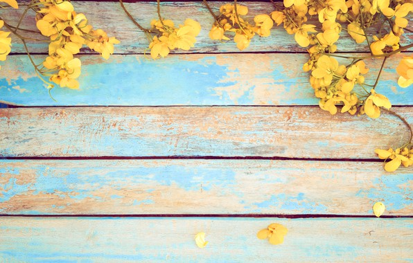 Wallpaper Flowers Spring Yellow Vintage Yellow Wood