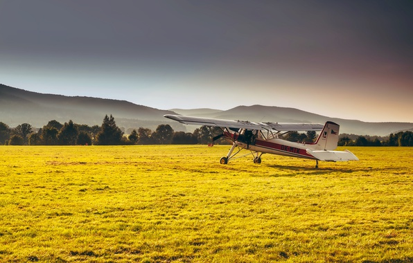 Picture field, forest, grass, mountains, the plane, haze, Sunny