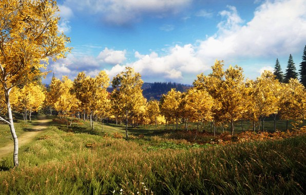 Picture The sky, Clouds, The game, Autumn, Trees, Forest, Art, theHunter™: Call of the Wild